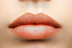 cayenne - kopia